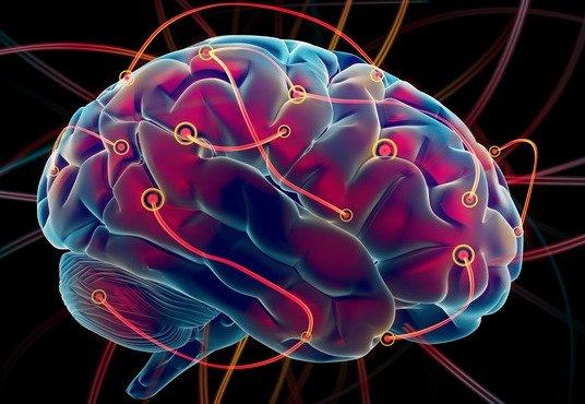 Neuroplasticitatea si efectul psihoterapiei asupra creierului